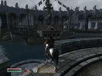 Oblivion 19