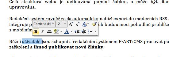 kontextové menu ve Wordu 2007